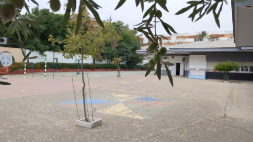 Colegio Manuel Canela