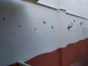 Escuela Infantil CEI Rin Tin Tin