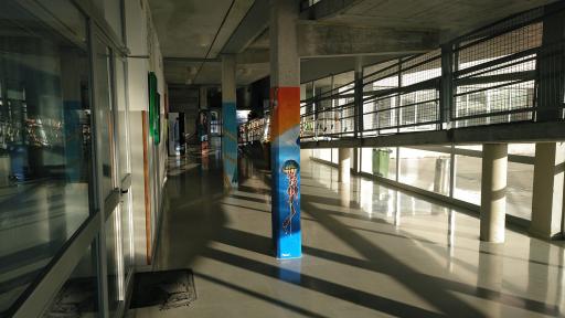 Instituto Porto Cristo