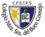 Logo de Nuestra Señora Del Buen Consejo