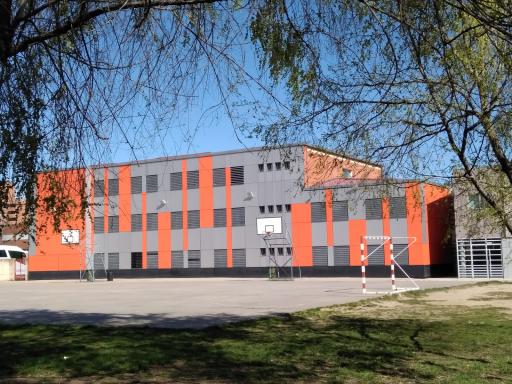 Instituto Emilio Ferrari