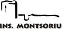 Instituto Montsoriu