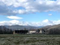Colegio Verntallat