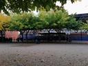 Centro Público Pla De Girona de