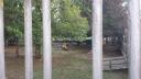 Centro Público Sant Roc de