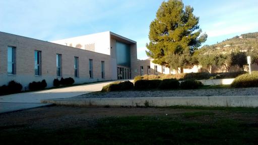 Instituto Joan Puig I Ferreter