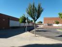 Centro Público La Rasa de