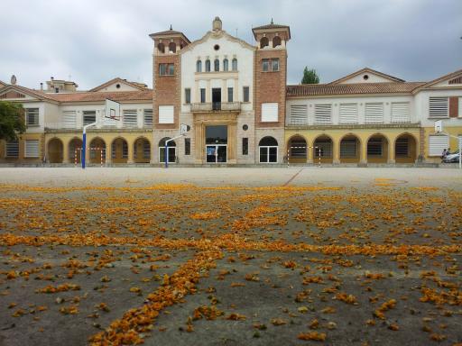 Instituto Gabriel Ferrater I Soler