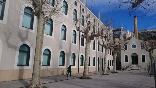 Colegio De Tarragona