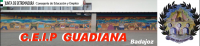 Colegio Guadiana