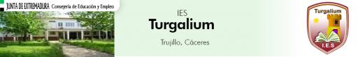 Instituto Turgalium