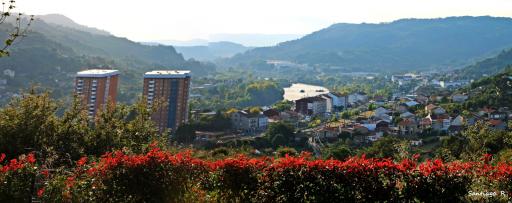Colegio Albino Núñez