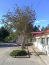 Centro Público Santa Lucía de A Alberguería