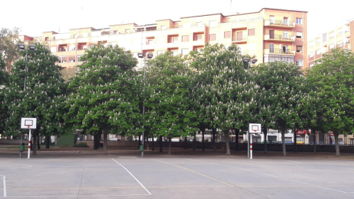 Colegio General Espartero