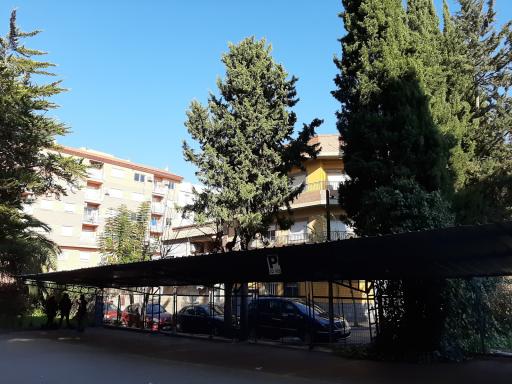 Instituto Francisco Salzillo