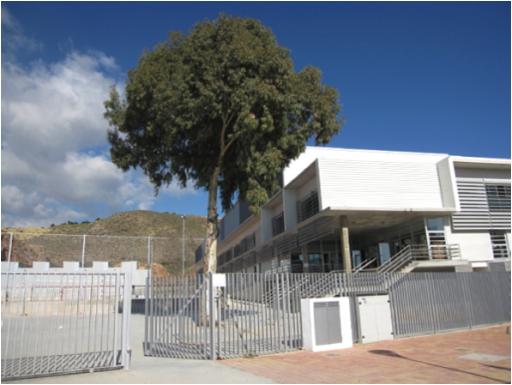 Instituto Bartolomé Pérez Casas
