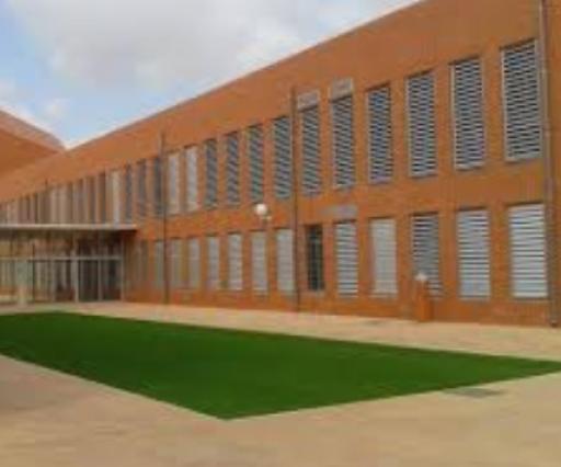 Instituto Felipe Vi