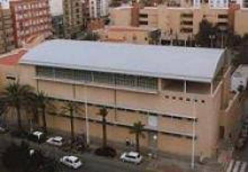 Instituto Carrús