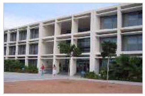 Instituto Misteri D'elx