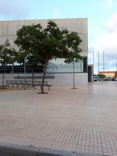 Instituto L'allusser