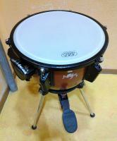 Colegio Unión Musical Torrevejense