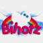 Logo de Bihotz