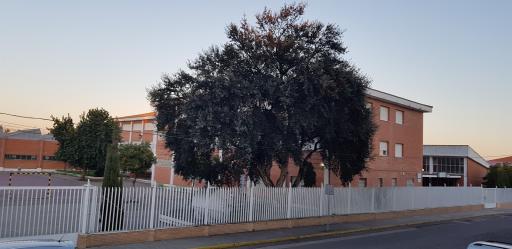 Instituto El Sur