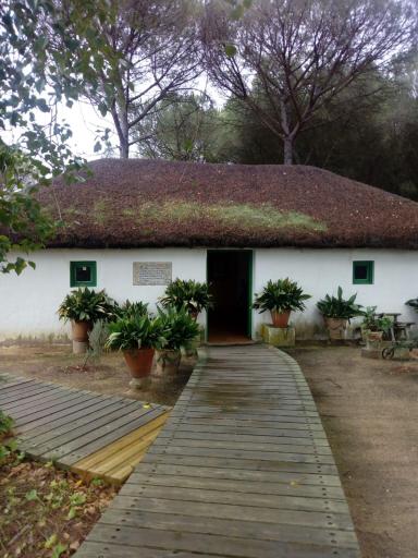 Colegio Dunas De Doñana