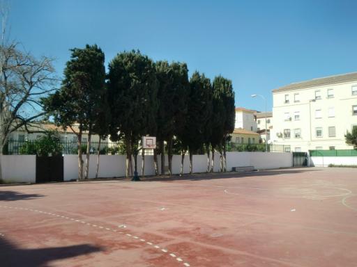 Colegio Luis Braille